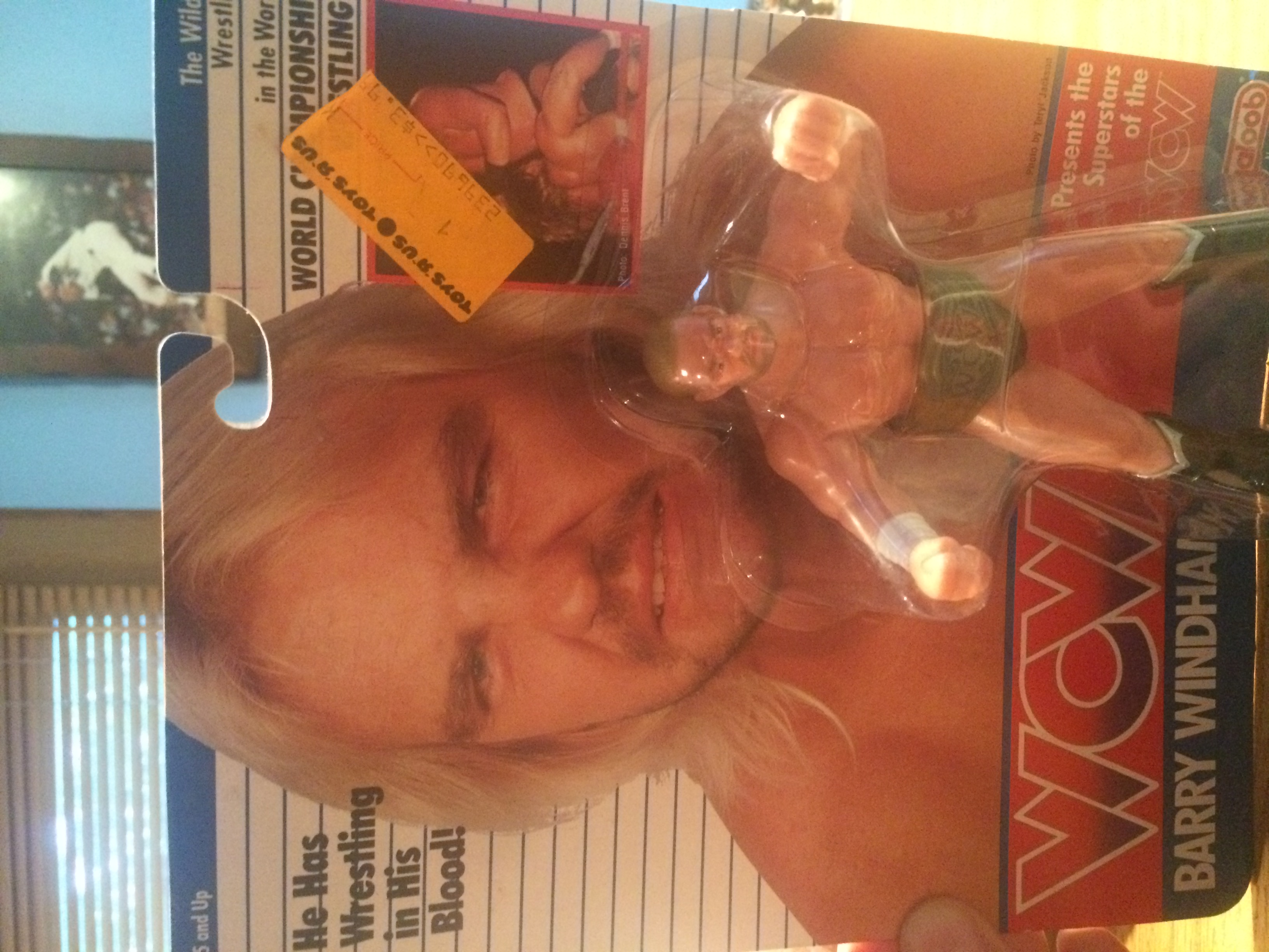 WCW Galoob Barry Windham Series 1 Figure