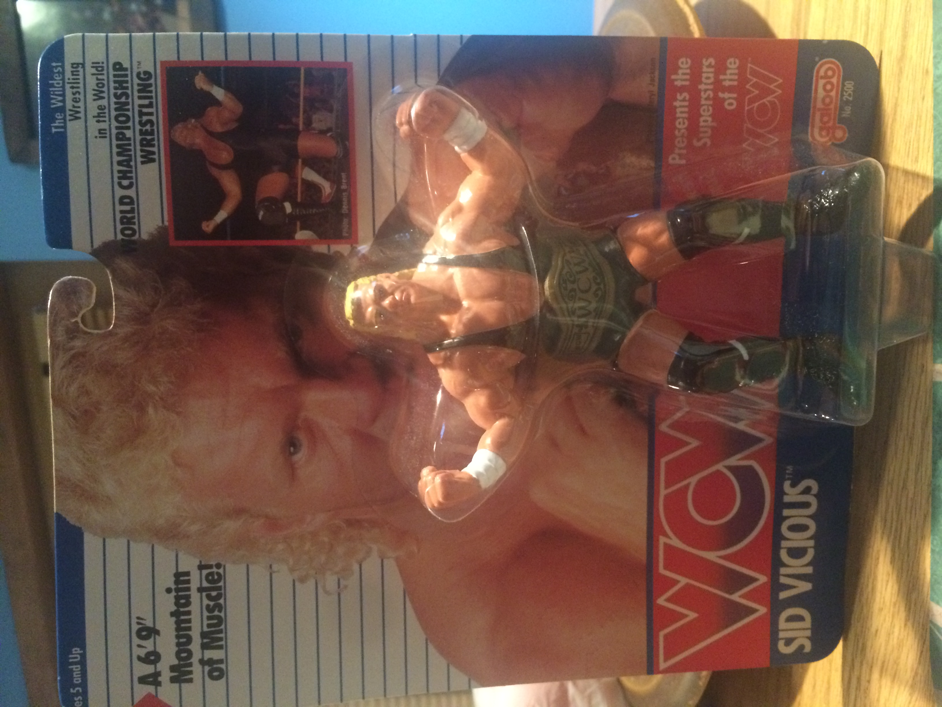 WCW Galoob Sid Vicious Series 1 Figure
