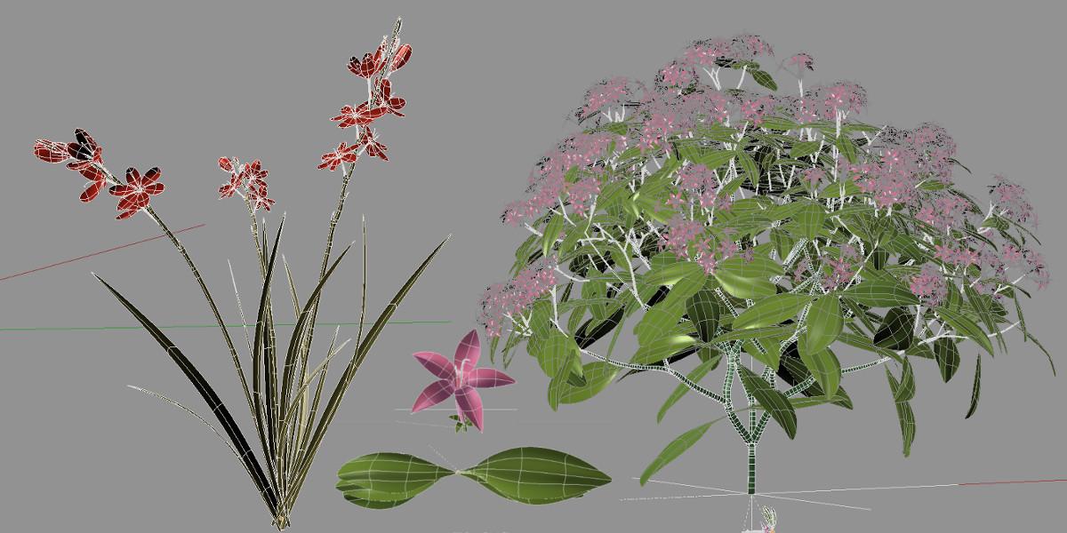 azalea flower node