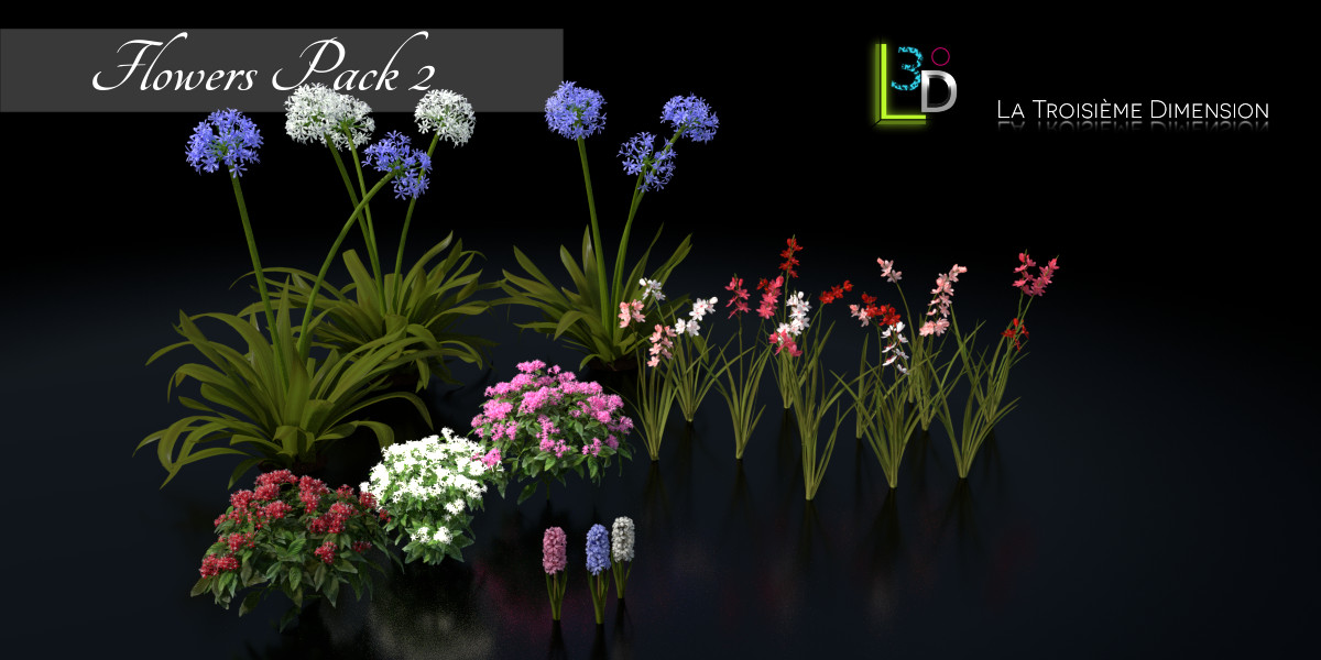 Flowers pack 2 blender marketflowers pack 2 blender market fleurs pack 1 flowers pack 2 mightylinksfo Image collections