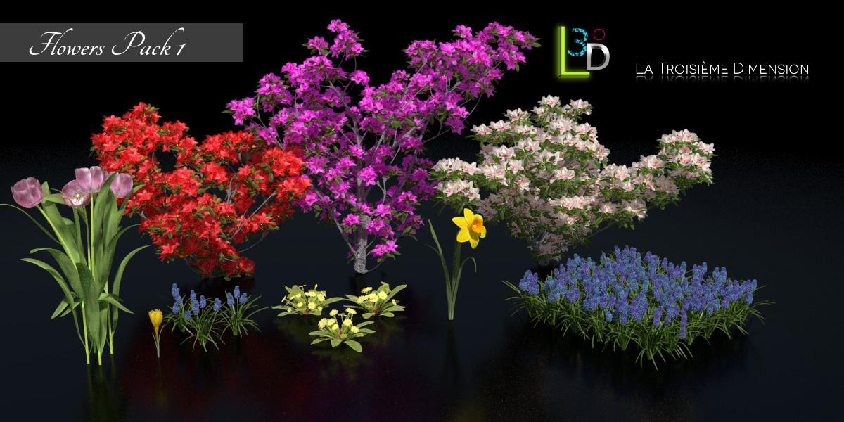 Fleurs Pack  1