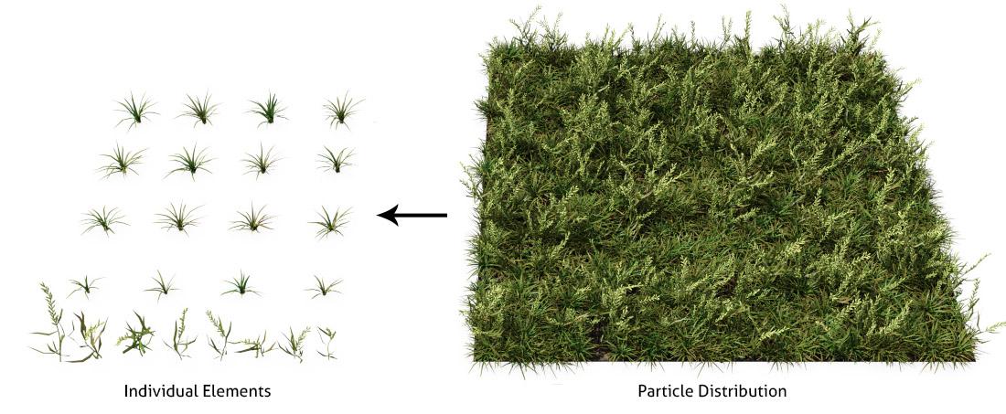 The Grass Essentials
