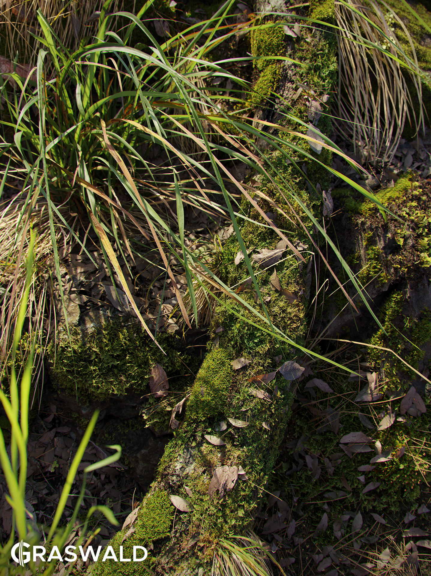 Grass Carpet Graswald Is Professional Highquality Asset Pack Containing Different Species Of Weeds Grass And Moss As Well As Various Kinds Of Debris Creative Market Graswald For Blender Blender Marketgraswald For Blender Blender