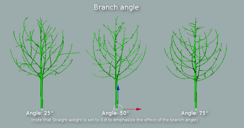 Trunk and branches branch angle.png