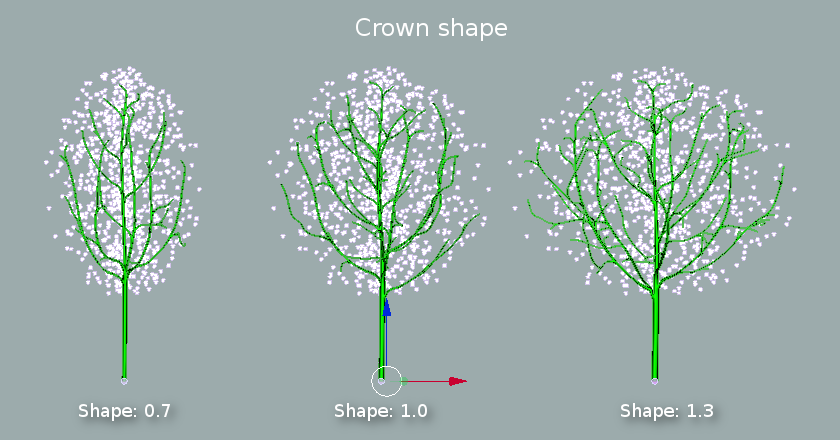 crown shape.png