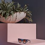 @thierrylasry's profile picture