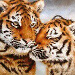 @sarahstribblingwildlifeart's Profile Picture