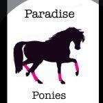 @paradise.ponies's Profile Picture