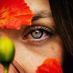 @aaronfele's Profile Picture
