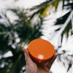 @myskyroam's profile picture