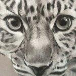 @brookewalkerart's Profile Picture