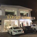 @harvestliving's Profile Picture