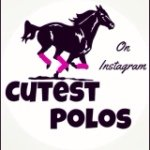 @cutest_polos's Profile Picture