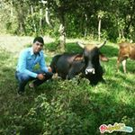 @jesus_arpaiz's Profile Picture