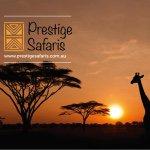 @prestigesafaris's Profile Picture