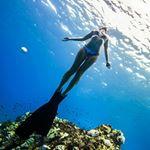 @Gypsea_swimwear's Profile Picture