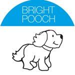 @brightpooch's Profile Picture