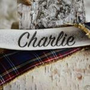 @charliebaxantlers's Profile Picture