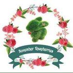 @novemberraspberries's Profile Picture