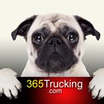@365trucking's Profile Picture