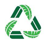 @greenbananapaper's Profile Picture