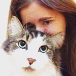 @sterlingmeowmeow's Profile Picture