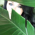@dreaming_of_decor's Profile Picture