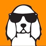 @localdawgs's Profile Picture