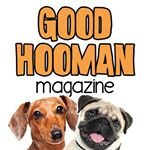 @goodhoomanmag's Profile Picture