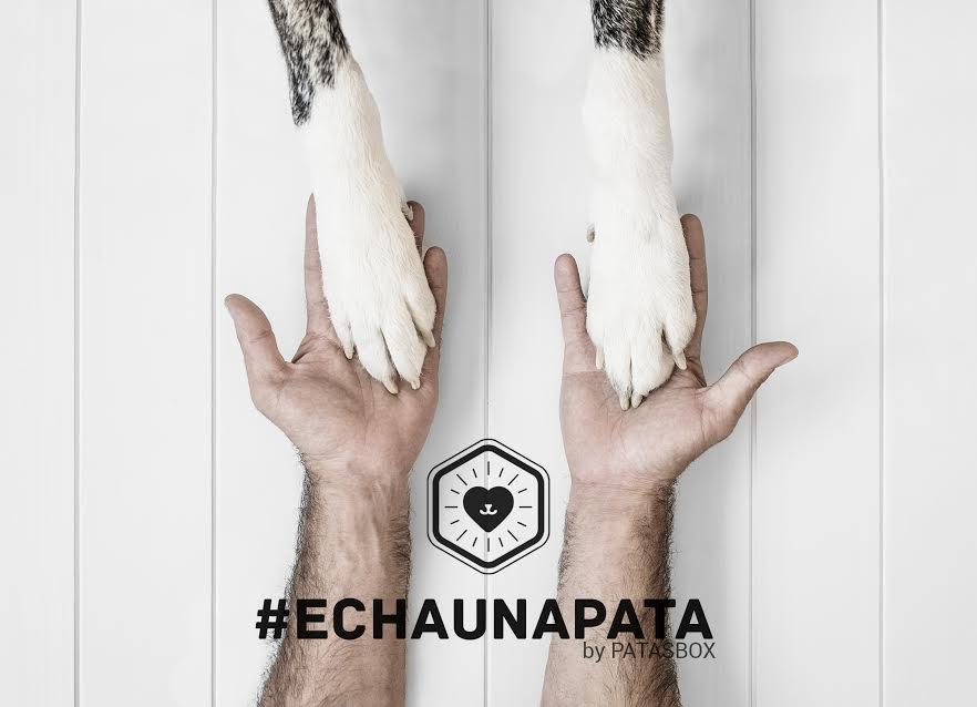 @pippa.thechihuahua's cover photo for 'Echa una pata con Patasbox ~ Pippa's Garden'