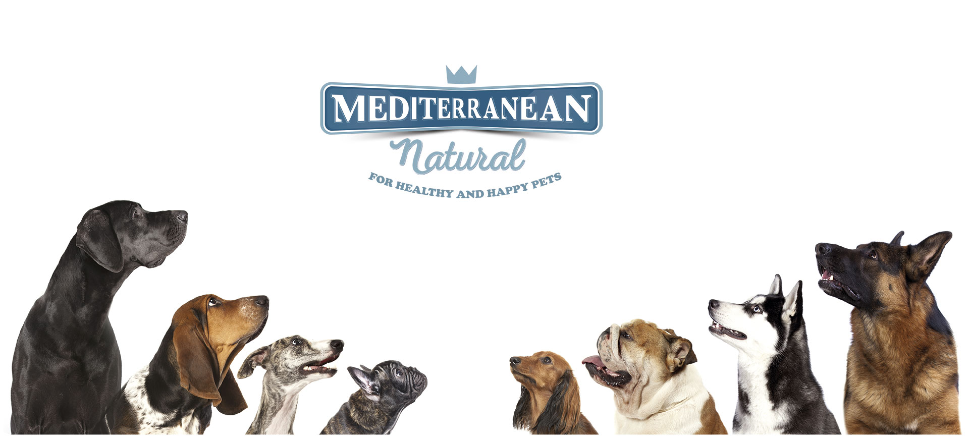 @pippa.thechihuahua's cover photo for 'Probamos Mediterranean Natural: alimento natural para tu can'