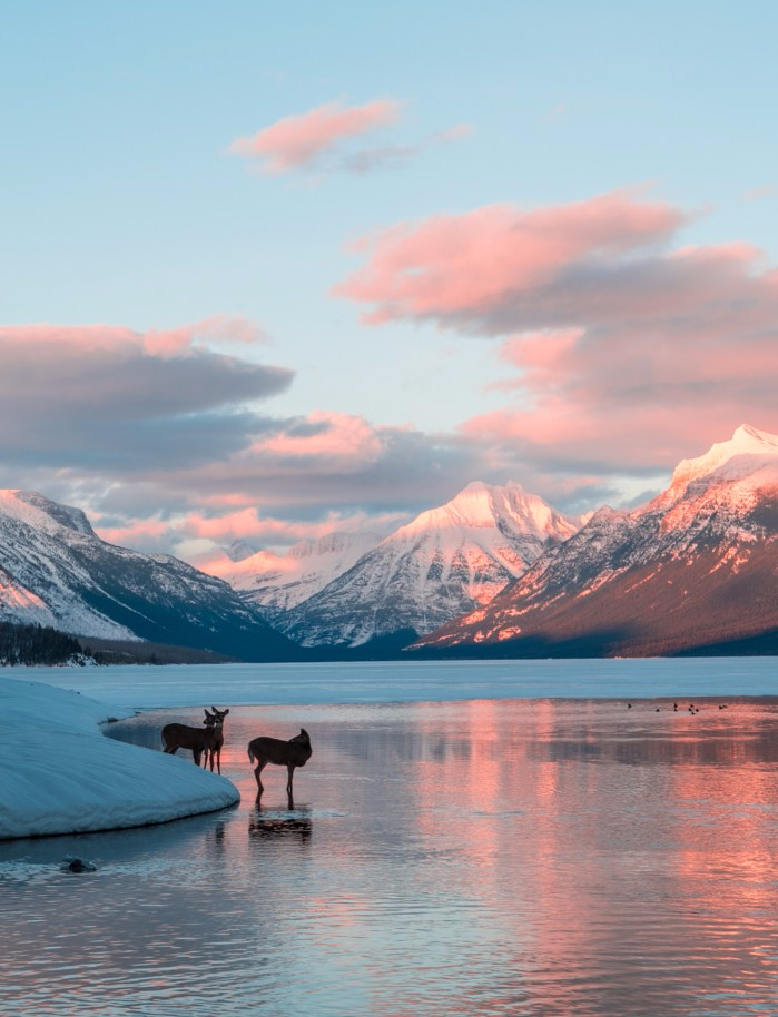 @wilderness_addict's cover photo for '10 reasons why you should visit Glacier National Park in the winter'