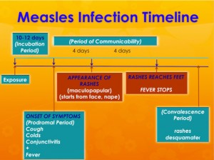 measles-infection-timeline