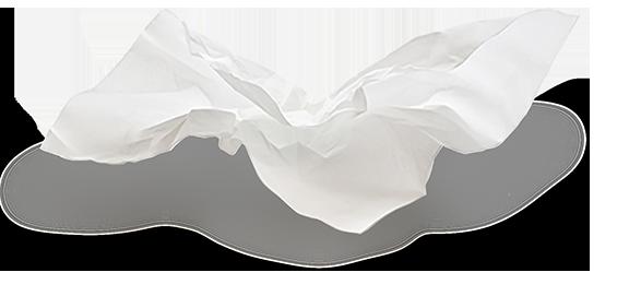 tissue web