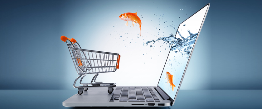 Guidelines-To-Run-E-commerce-Business_L.jpg