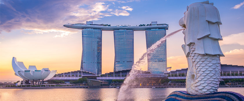 certified-translation-services-in-singapore.jpg