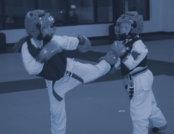 Support Page for MartialArts.io Martial Arts Software