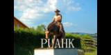 PUAHK