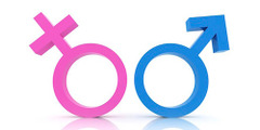 Name Gender