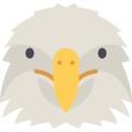 Eagle Metrics