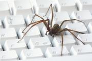 Webkrawler