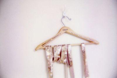 Sequins-photo-fieldguided