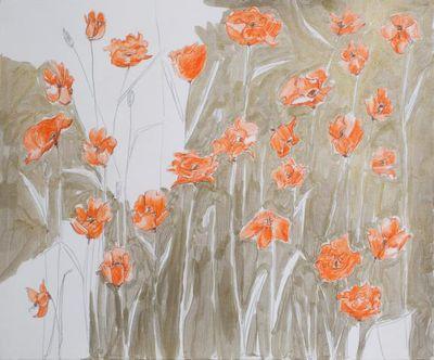 Kristin_oppenheim_poppies_study_number3_artspace