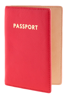 Passport-case