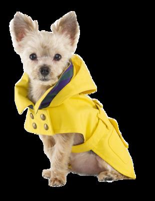 Dog-raincoat-ralph-lauren