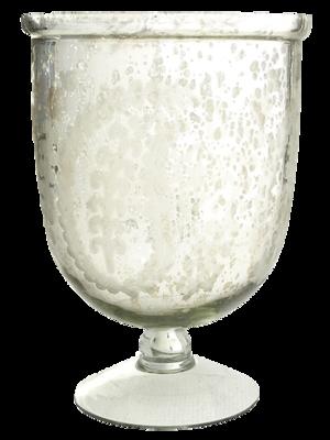Silvered-botanical-glass