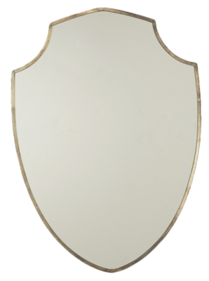 Shield-mirror