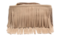 Twiggy-clutch-shopbop