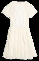 Embroidered-silk-dress-madewell