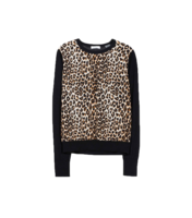 Leopard-sweater-equiptment